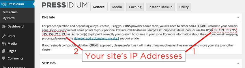 Pressidium WordPress PlugIn - DNS Information