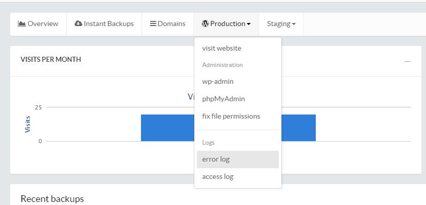 Pressidium Access and Error logs in Control Panel