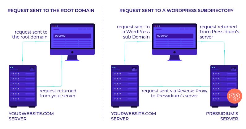 WordPress Reverse Proxy Setup