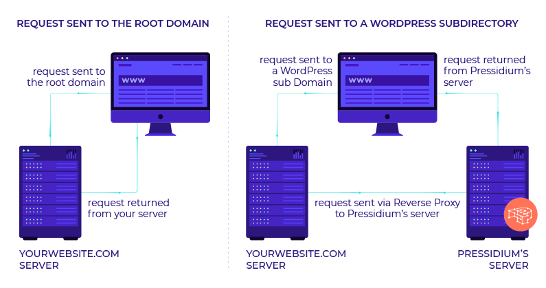 WordPress Reverse Proxy